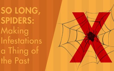 So Long, Spiders: Making Infestations a Thing of the Past