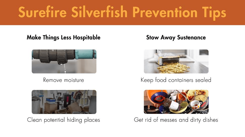 Surefire silverfish prevention tips: 1) Make things less hospitable by removing moisture and cleaning potential hiding places 2) Stow away sustenance by keeping food containers sealed and getting rid of messes and dirty dishes.