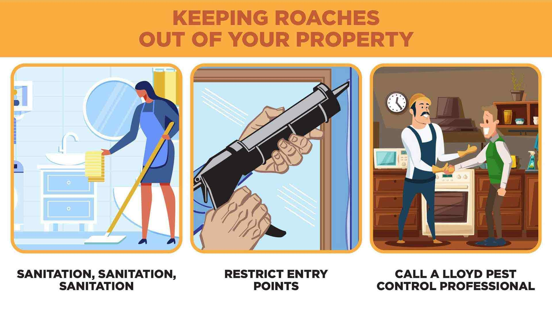 Three-part illustration featuring person cleaning their home, restricting German cockroach entry points, and calling a cockroach professional at Lloyd Pest.