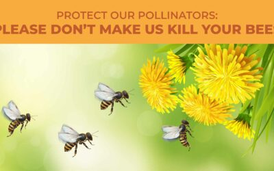 Protect Our Pollinators: Please Don't Make Us Kill Your Bees