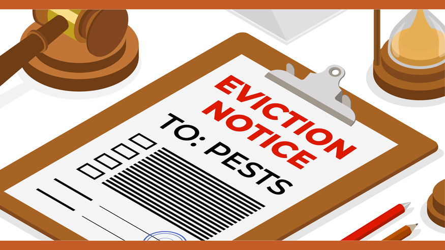 Illustration featuring a pest eviction notice on clipboard next to gavel.