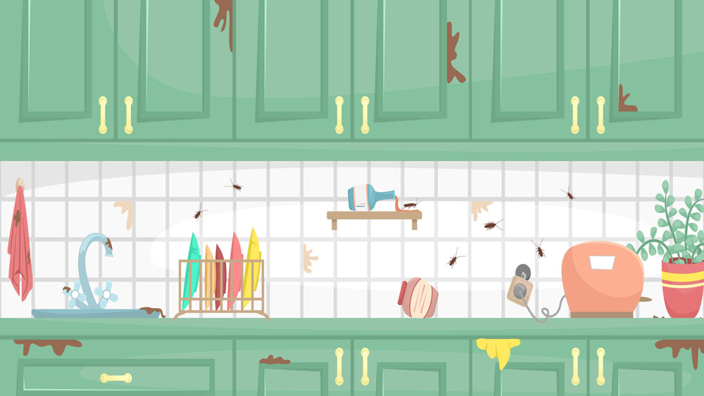 Illustration featuring cockroaches crawling across the backsplash of a kitchen in a Southern California home.