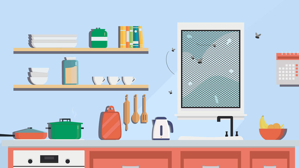 Illustration featuring a fly infestation inside a Southern California home's kitchen.
