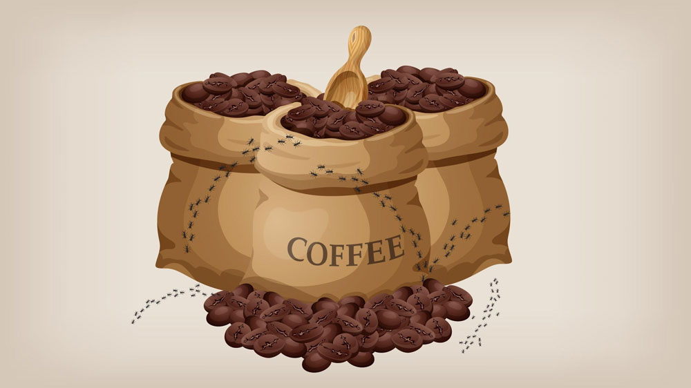 Illustration of ants crawling on muslin bags of coffee.
