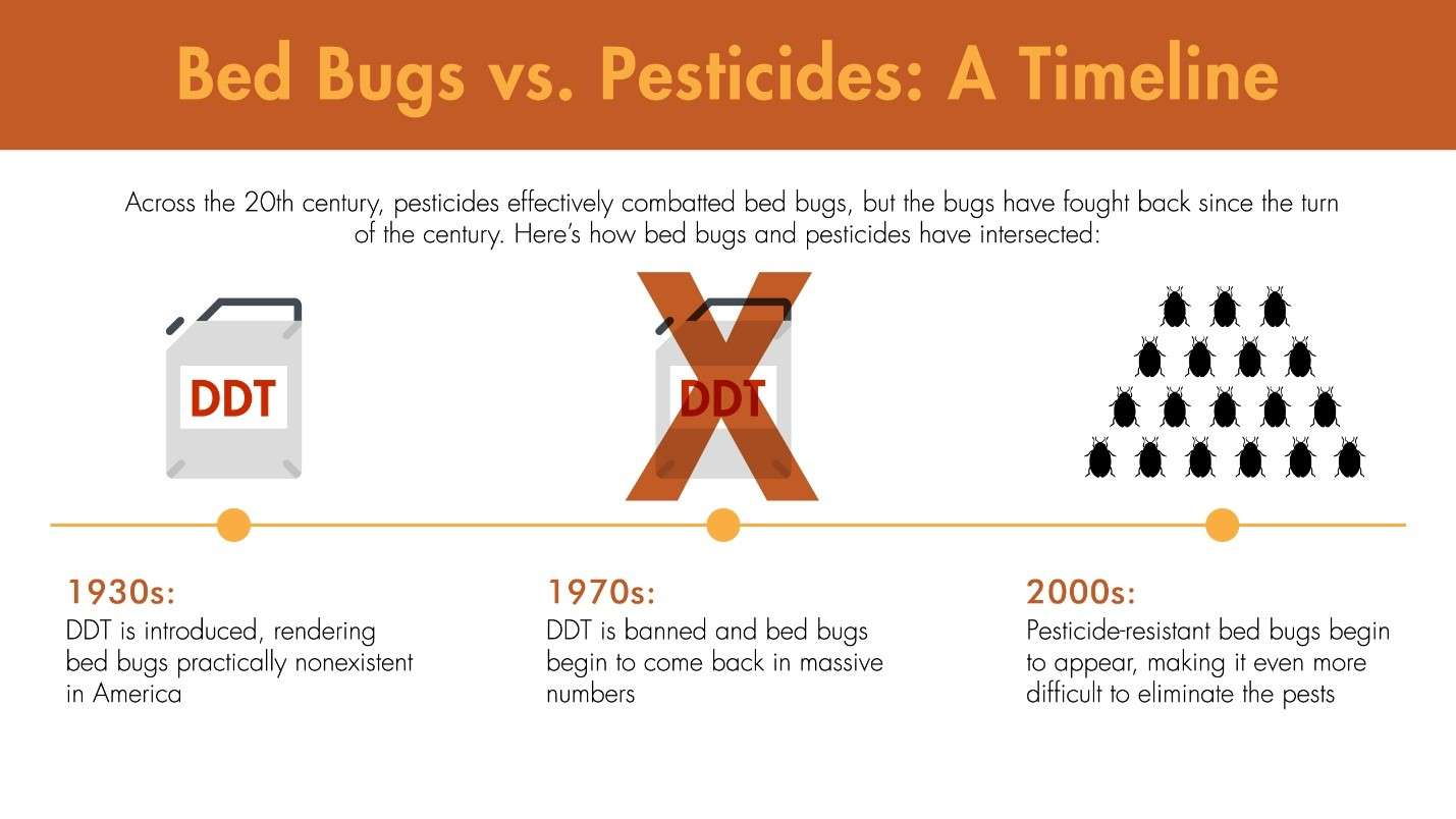 Illustration of the timeline from initial bed bug pesticide treatments to immunity.
