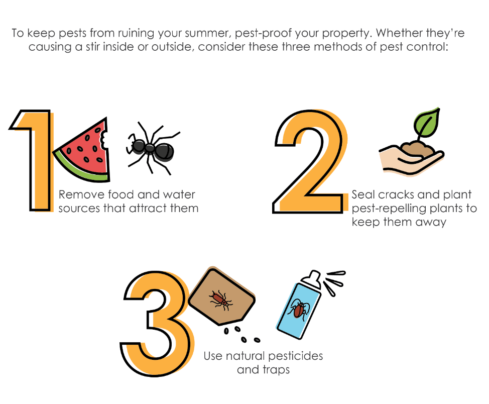 To keep pests from ruining your summer, pest-proof your property. Remove food and water sources that attract them, seal cracks and plant pest-repelling plants to keep them away, and use natural pesticides and traps.