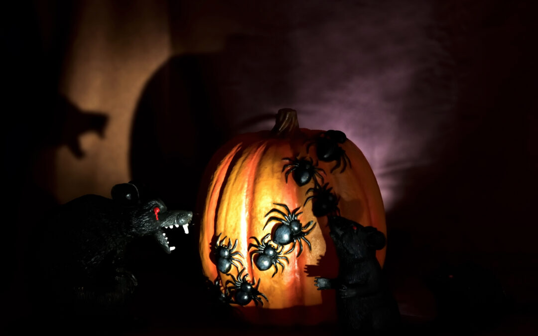 Halloween Pest Control: When Halloween Decor Becomes Reality